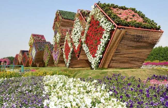 גן הפרחים של דובאי